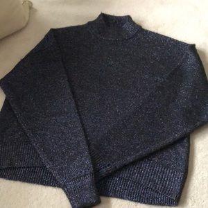 Sparkly Zara sweater!